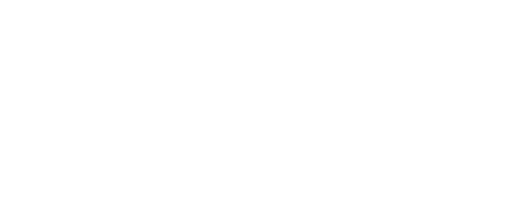 NORDIN logo - white